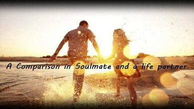 Photo of A Comparison in Soulmate and a life partner