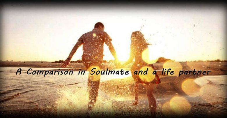 A Comparison in Soulmate and a life partner